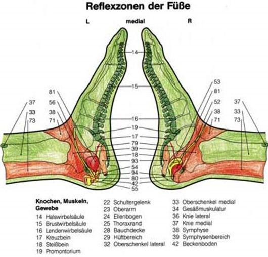b_reflexzonen